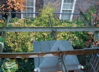 1-trellis-with-ceiling-fan-roof