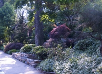 1sidewalk-landscape